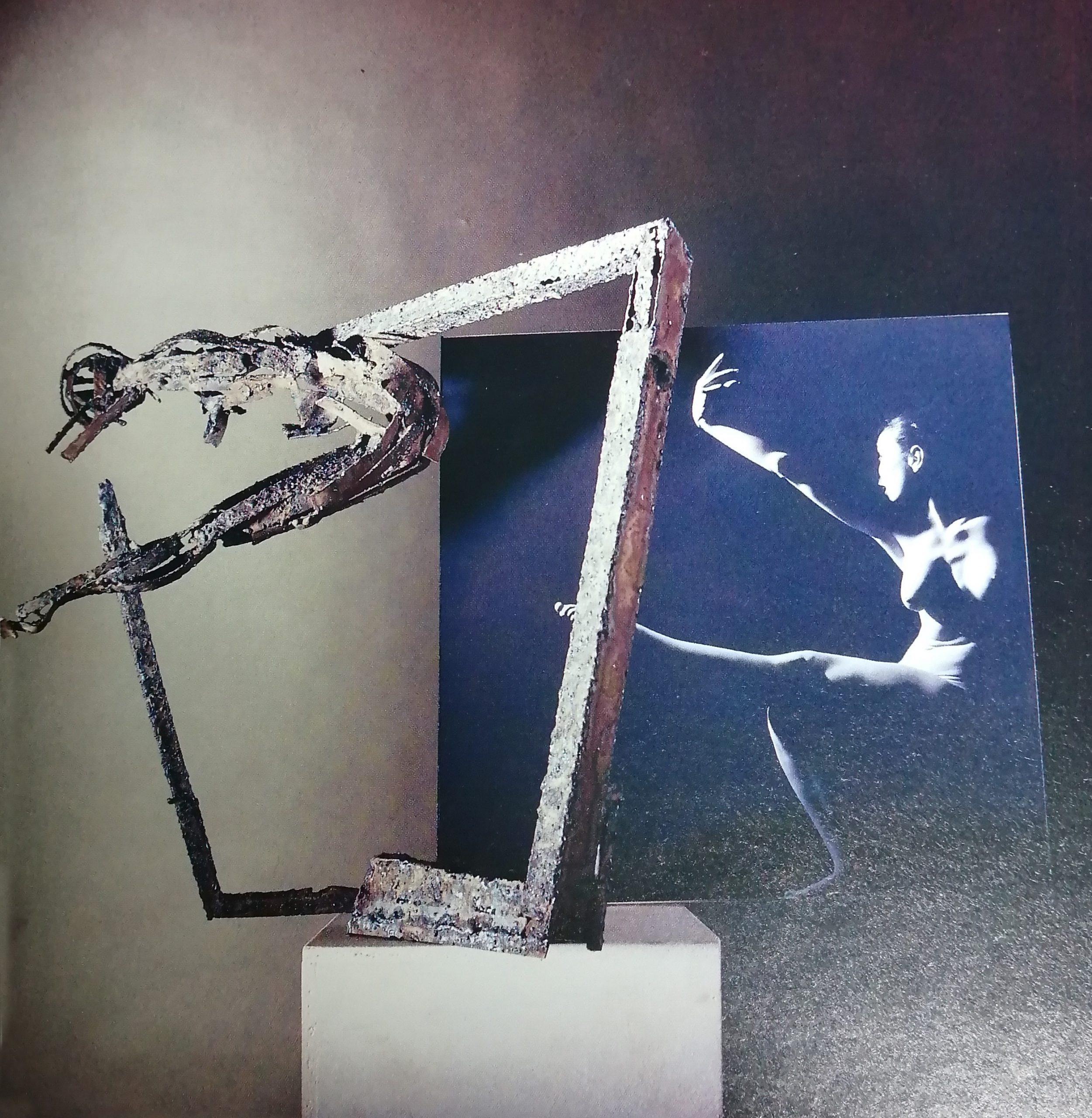 1995 Brera Musei Civici Gallarate immagine scaled - Bibliography/ Catalogues