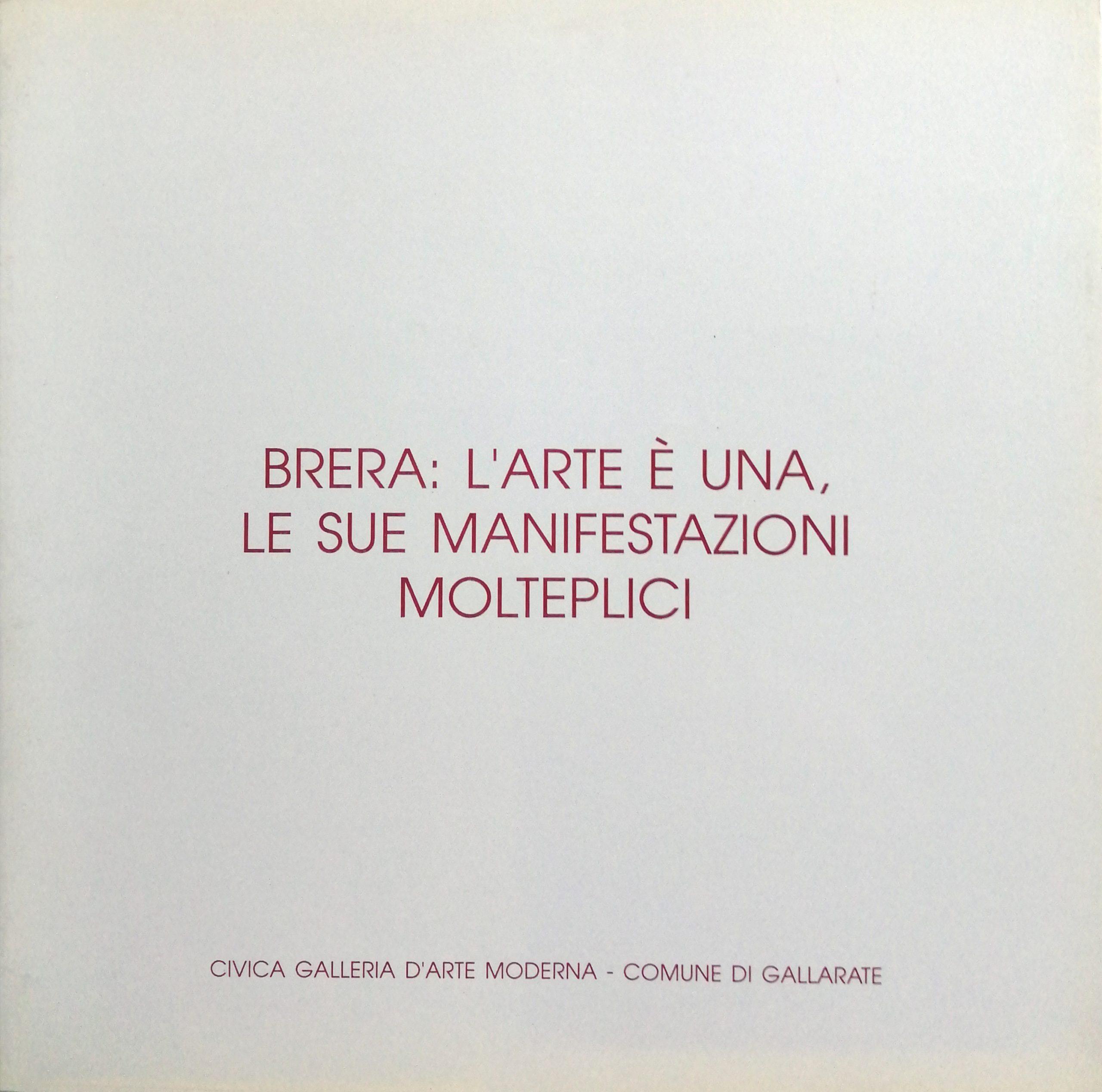 1995 Brera Musei Civici Gallarate scaled - Bibliography/ Catalogues