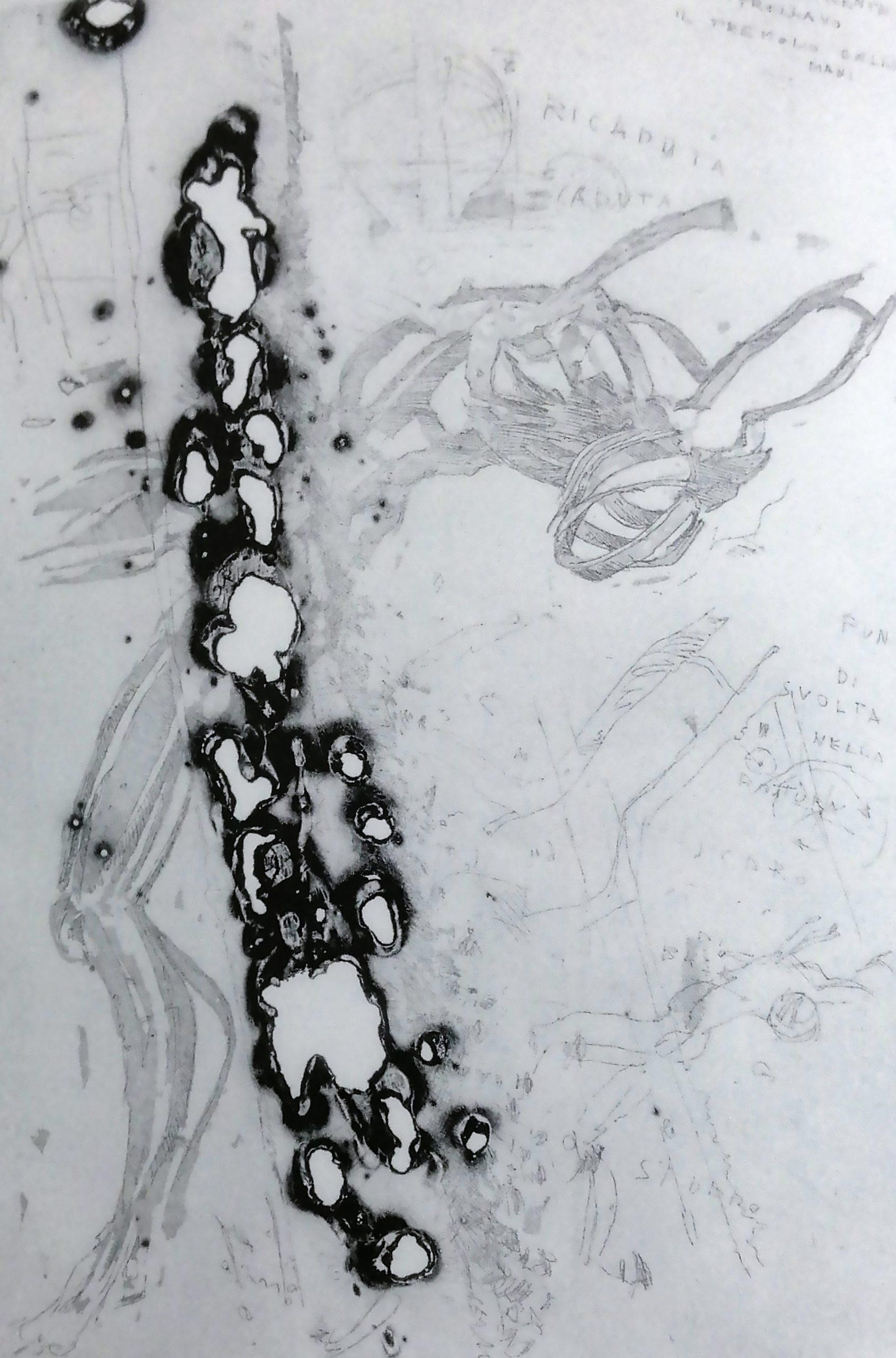 2003 2007 Bianco Nero.imm  scaled - Bibliography/ Catalogues